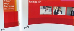 Rollup Banner si Stand Popup – PWC