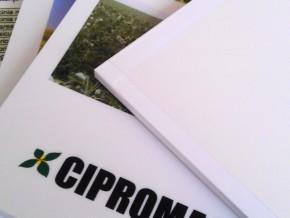 Panouri Publicitare - CipromaSem